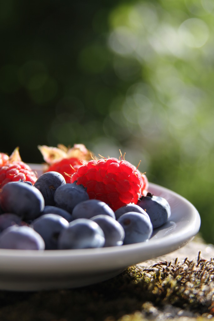 Blueberries and Raspberries on Plate