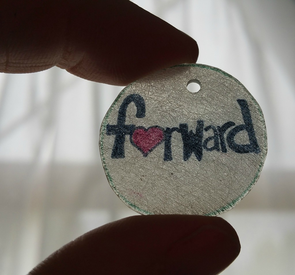 Forward Shrinky Dink1